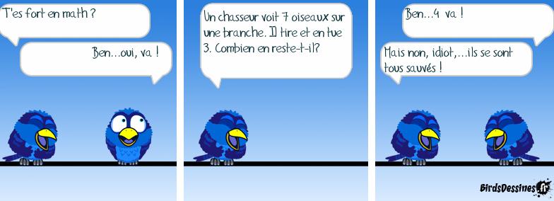 maths humour oiseau.png
